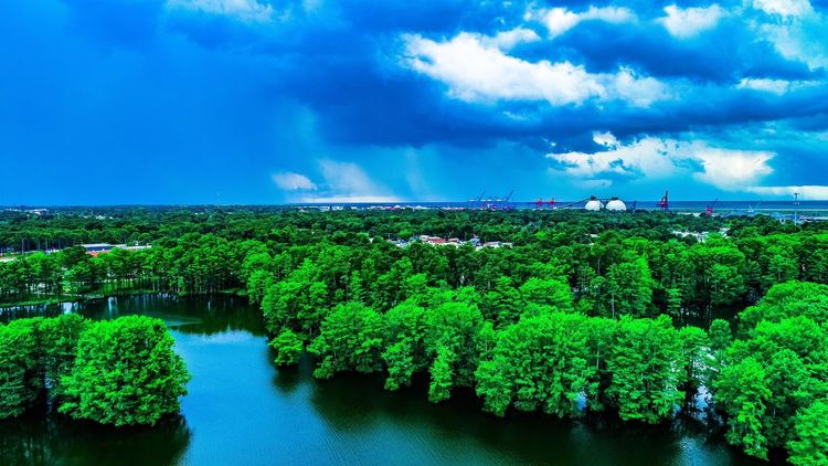 Tranquility Sky Cloud - Sky Beauty In Nature Green Color Scenics Tranquil Scene Nature Tranquility Outdoors No People Water Day Growth Plant Agriculture Landscape Tree Rural Scene Sea Aerial View Green Color Nature Grass Tree Beauty In Nature