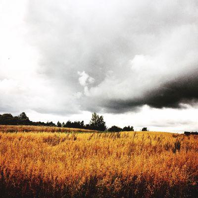 Belarus Nature