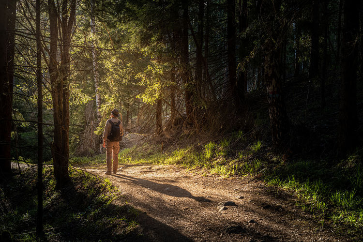 Man standing on dirt road in forest
