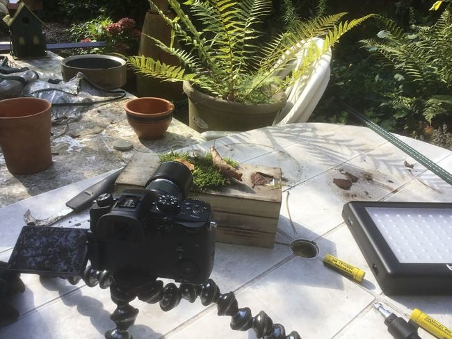 Setup for tabletop shot of mushroom Camera Chair Lumix GH5 Setup Close-up Day Fern Gh5 Gorillapod High Angle View Moss No People Outdoors Plant Table Tabletopphotography Technology