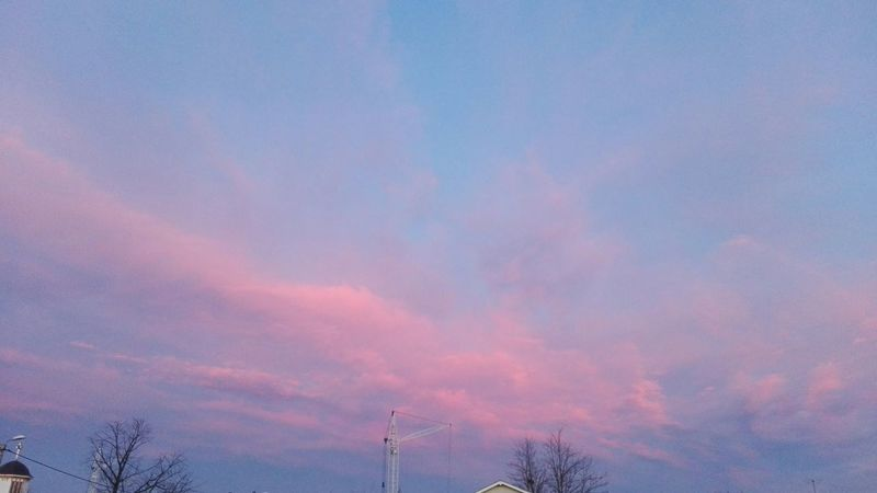 Cloud - Sky Beauty In Nature Outdoors Sky Low Angle View Tree Nature Sunset Beautiful Sky Romania Showcase: February Showcase: 2017 Wolfzuachiv @WOLFZUACHiV On Market Eyeem Market Ionitaveronica Edited By @wolfzuachis Veronicaionita Romantic Sky Ionita Huaweiphotography EyeEmNewHere Pink Clouds Panoramic Millennial Pink