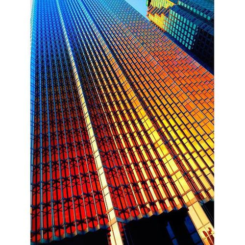 A little bit of colour never killed nobody ;) Royal Bank Tower Toronto Canada Tower Buildings Buildinglovers City Citylandscape RoyalBankTower Toronto TorontoLife Colour Gold Skycraper Awesomebuilding Awesomeplacestolive Perfection Landscapehunter Citylovers Instalikes Instatoronto Pictureoftheday
