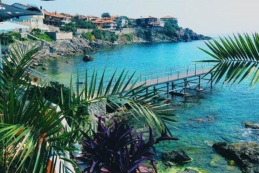 Palm Tree Water Sea Sky Nature Day Beauty In Nature Relax VSCO Vscocam Vscogood Vscogram Old Town History Traveltime Traveling Historic Seascape Atmosphere Bulgaria Nessebar Beachphotography