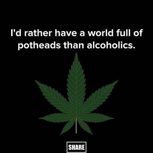 Stoners Pot Marijuana Curescancer