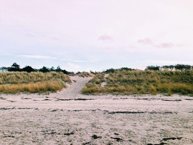 Strand Beach Ostsee Dunes Warnemünde Sand Nature Sea