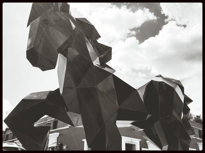Oaxaca De Juárez Santo Domingo Escultura Caballo