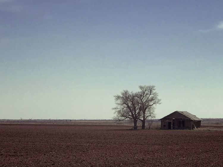 Someone's once-upon-time dream home Tree Nature No People Landscape Agriculture Abandoned Buildings Decrepit Old Buildings Brown Dirt Farm EyeEmNewHere Break The Mold