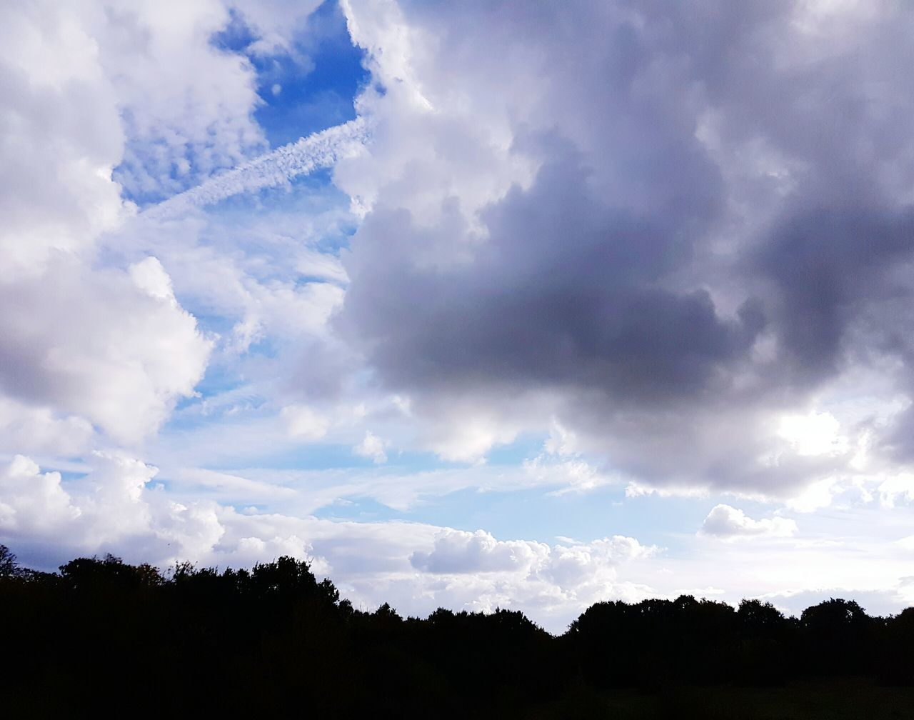 sky, nature, cloud - sky, silhouette, beauty in nature, scenics, tree, tranquility, outdoors, no people, day, tranquil scene
