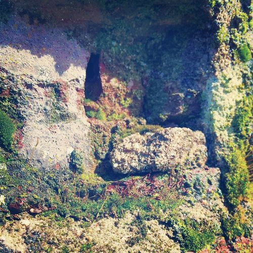 Entrada De La Cueva Del Ladrillo De mi Pueblo Cedillodelcondado Cuando Querais Venis A Verla Esta Mu Chula Samuelada Laughin_petardis_samuelada @laughingoutloud_petardis