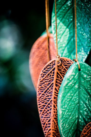 Fragile Leaves of Sound Ceramic Close-up Focus On Foreground Fragility Hanging By A Thread Leaf No People Red Wind Chimes