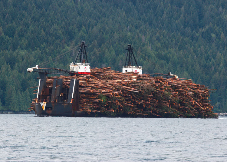 A log barge in