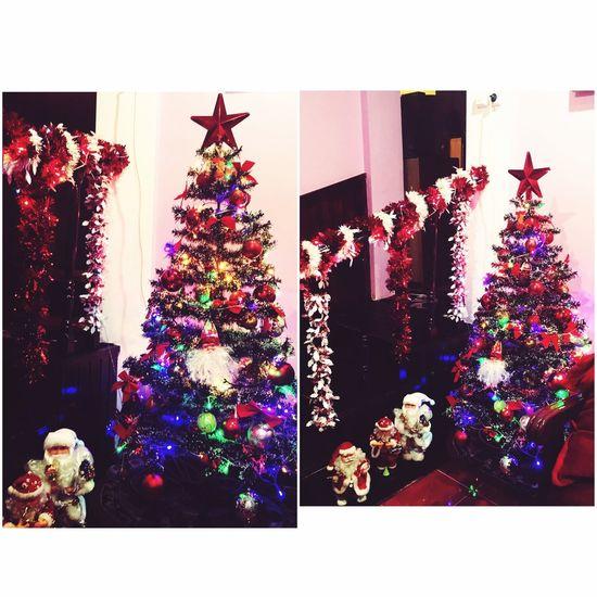 Mychristmastree 🌲🙈🙈🎊🎊🎉🎉❤❤❤❤