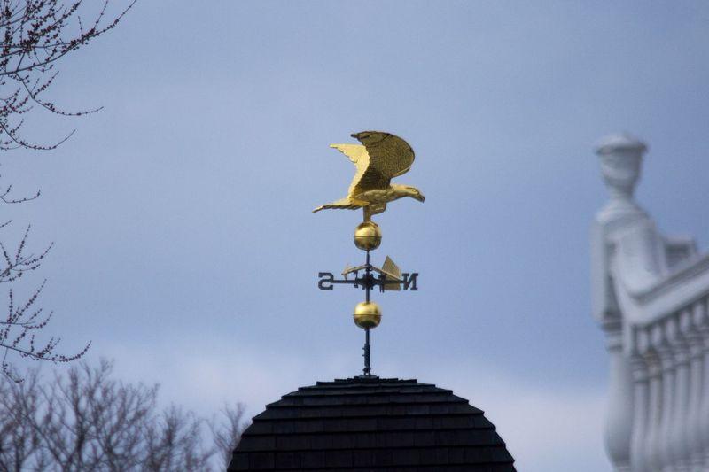Salem, Massachusetts Weather Vane Animal Representation Architecture Low Angle View Nature No People