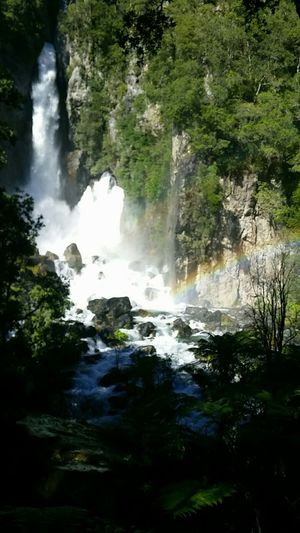 Slice of paradise. Waterfall Water Nature River Scenics Beauty In Nature Outdoors Colour Your Horizn