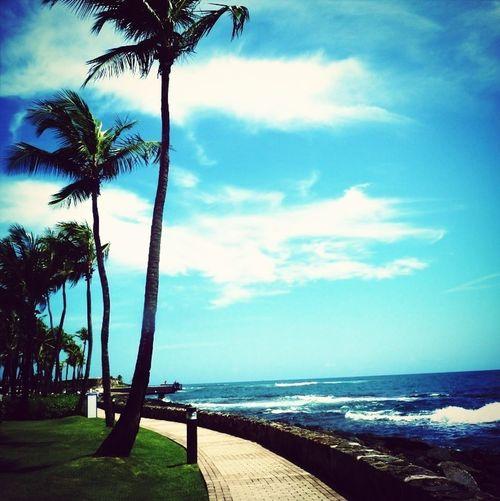 Beautiful Vacation