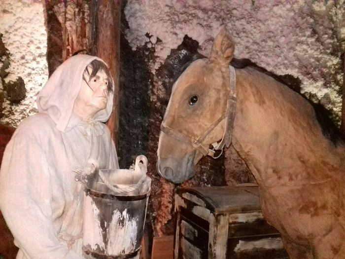 Horse Photography  Person Saltmine  Wieliczka Salt Mine Krakow,Poland Peasant Village View Historical Place