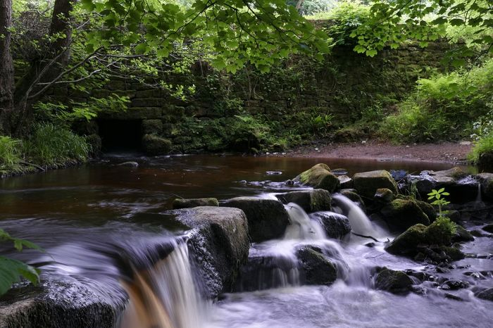 Another shot from yesterday's trip to Rivelin Valley Note to self...remember the tripod attachment next time! 😩😂😂 Water Tree Nature Motion Waterfall Beauty In Nature Long Exposure Outdoors Check This Out Panasonic Lumix Panasonic DMC FZ1000 Dayoutwithfriends Tranquility Nature Photography Photography Is My Escape From Reality! From My Point Of View Beautiful Nature_collection For Anyone Whos Interested The Great Outdoors - 2017 EyeEm Awards Beauty In Nature Tranquil Scene Share-Your-Long-Exposure