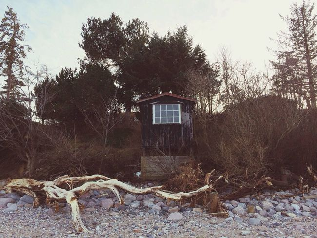 Peaceful hut on the beach Nature Landscape Beach EyeEm Nature Lover