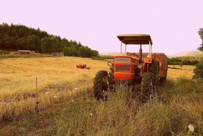 Abandoned Absence Abundance Agriculture Damaged Day Direction Environmental Conservation Farm Field Grano Grass Grassy Green Color Guidance No People Obsolete Outdoors Rural Scene Rusty Safety Tuscany