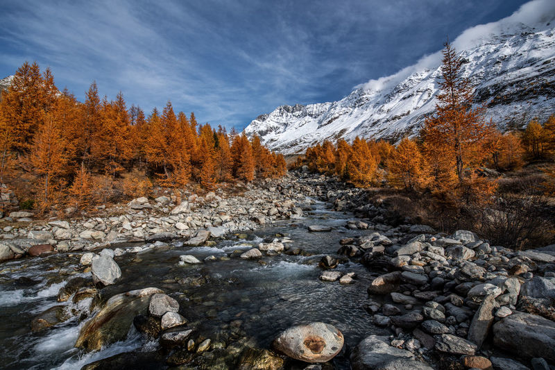 Scenic view of stream against sky during autumn