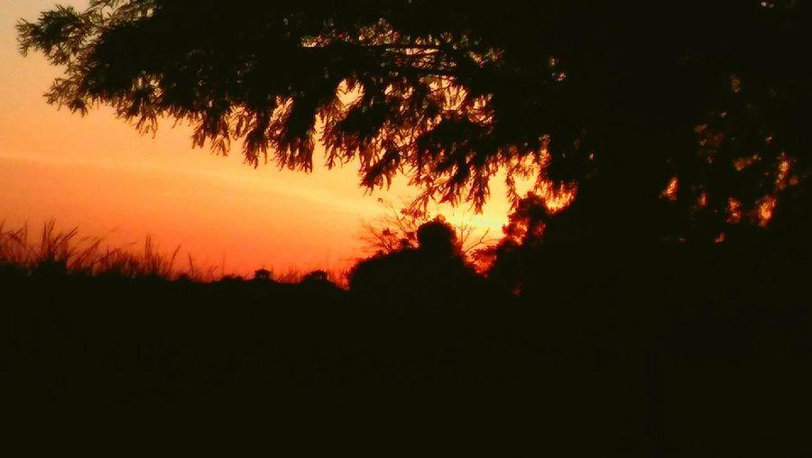 Sebring Florida Sunset First Eyeem Photo