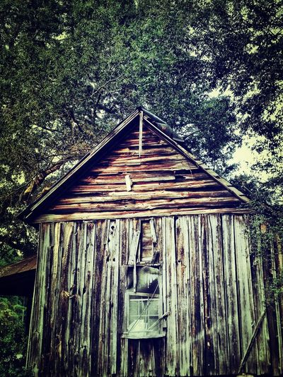 Cabin Countryside Texture