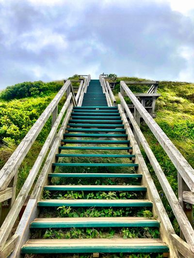 Sylt Stairs Wood - Material Wood Sky Plant Cloud - Sky Direction Nature Day The Way Forward Tranquility Sunlight Field Low Angle View Built Structure Architecture Diminishing Perspective No People Land Outdoors Railing Staircase Growth