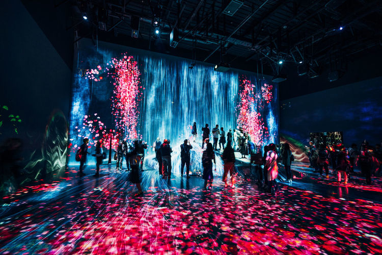 Group Of People Crowd Large Group Of People Real People Illuminated Men Lifestyles Red Night Adult Indoors  Leisure Activity Architecture Women Motion Enjoyment Built Structure Celebration Lighting Equipment Light Spectator Nightlife TeamLabBorderless TeamLab
