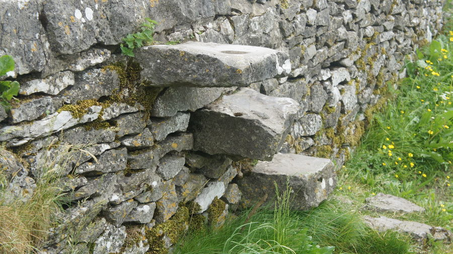 Close-up Day Dry Stone Walling Growth Nature No People Outdoors Stone Streps Drystonewall Drystonewalls Go Higher