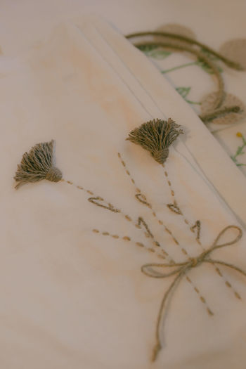 Close-up of dry plant on table