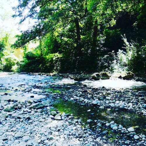 Gradac River,Serbia Valjevo, Serbia Connected By Travel Perspectives On Nature