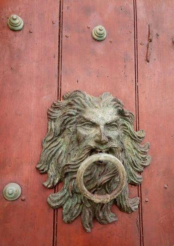 aldabon Close-up Closed Door Door Front Door Wooden