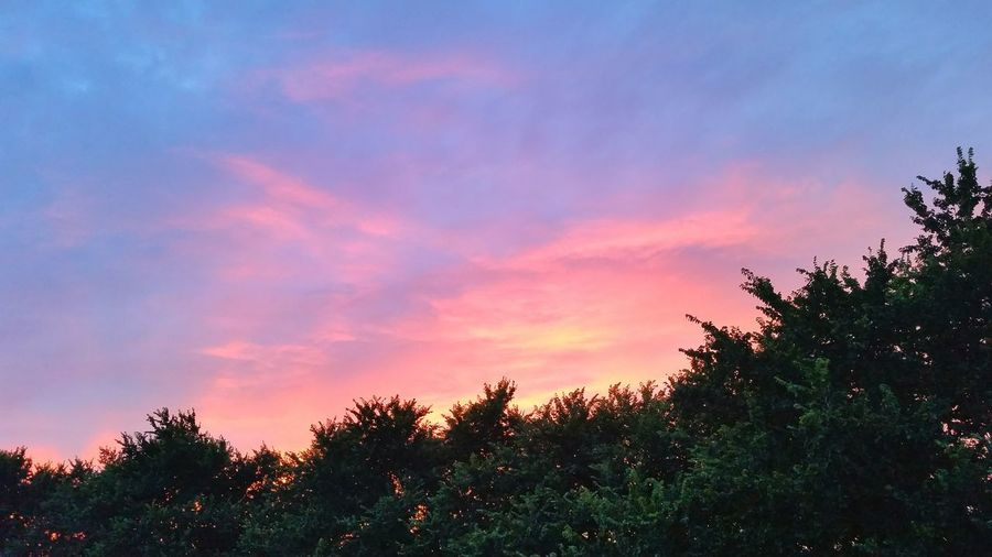 Red Sky Sunset Evening Sky Trees Sky Clouds Pembrokeshire