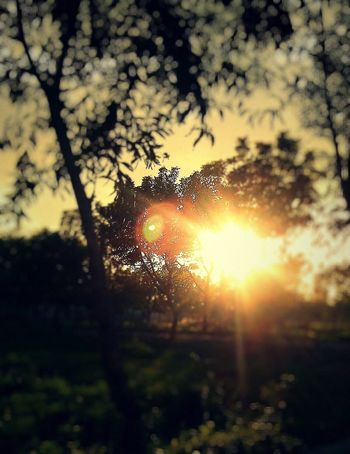Sunset Relaxing Naturelovers Landscape Taking Photos Sun Sunset_collection Hello World