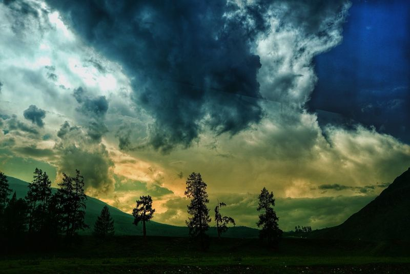 China Photos Cloudpark Treepark Travel Dramatic Sky Cloud - Sky Sunset Landscape Ominous Sky Outdoors Storm Cloud Nature Tree No People Scenics Wildlife & Nature Kanas Lake Urban Landscape Fragility Growth Rural Scene Beauty In Nature Focus On Foreground Tranquility