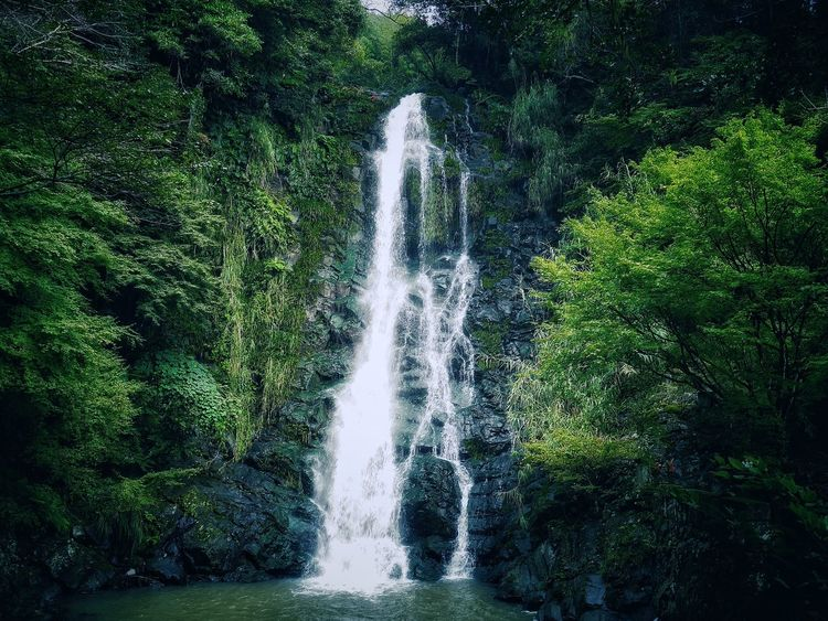 No name Waterfall Beautiful Nature Today's Hot Look Walking Around Discover Your City Nagasaki City Landscape After The Rain Today Morning