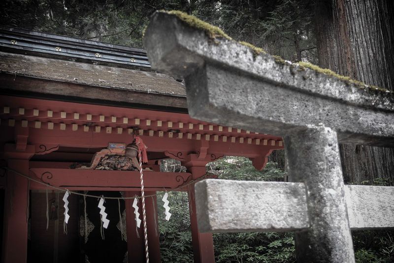 Stone torii Ultimate Japan Old Buildings Nikko Futurasan Taiyu-in Temple - Building Architecture Japan