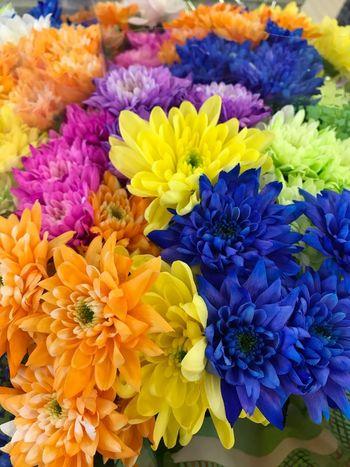 💛❤️💚💙💜💖 Flower Fragility Freshness Purple Beauty In Nature Petal Nature Flower Head Multi Colored For Sale No People Springtime Flower Market