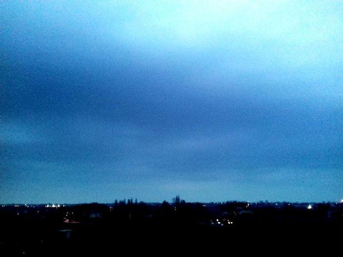 Tree Blue Silhouette Sky