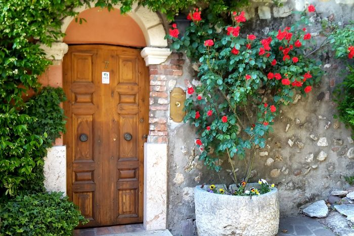 Blooming entrance Door Wood Flowers Colors Nature Urban Nature Sweet Vases Plants House Entrance Roses Rosé Porta Fiori Casetta Italy Italia Hidden Gems  Home Is Where The Art Is
