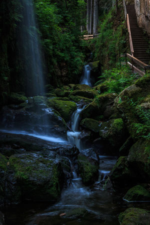 Beauty In Nature Black Forest Day Flowing Flowing Water Forest Green Color Long Exposure Moss Motion Nature No People Outdoors Plant Rock Rock - Object Schwarzwald Stream Tree Water Waterfall Wood