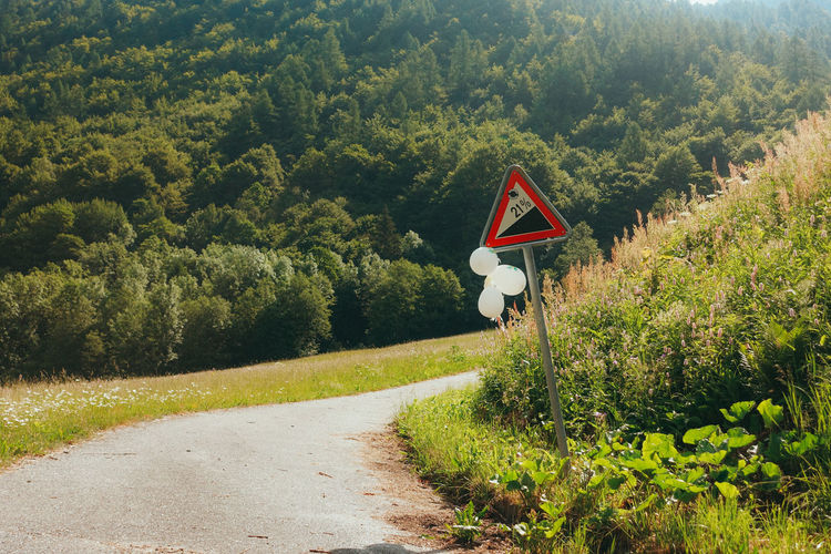 Mogno Travel Travel Photography Beauty In Nature Communication Day Direction Green Color Growth Land Landscape Nature No People Outdoors Plant Road Road Sign Scenics - Nature Sign Switzerland The Way Forward Tranquil Scene Tranquility Transportation Tree