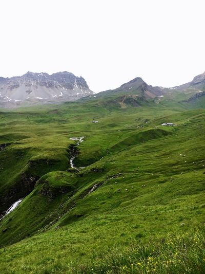 Mountain View Mountain Landscape Nature Green Color Beauty In Nature Scenics Grass No People