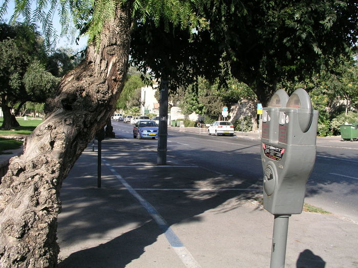 You Talking to Me? Day Growth Nature No People Outdoors Parking Meter Shadow Sunlight Tree