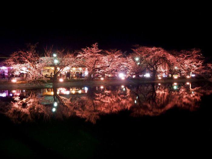 日本は美しい✨色んな景色が見たくて…☺️✨ Water Reflections Light And Shadow EyeEm Gallery Reflection Night View Lake View Nagano, Japan 臥竜公園 何処でも行っちゃうんだから🏃♀️〜〜♫♫ 次はどこ行こうかな〜〜😆⁉️
