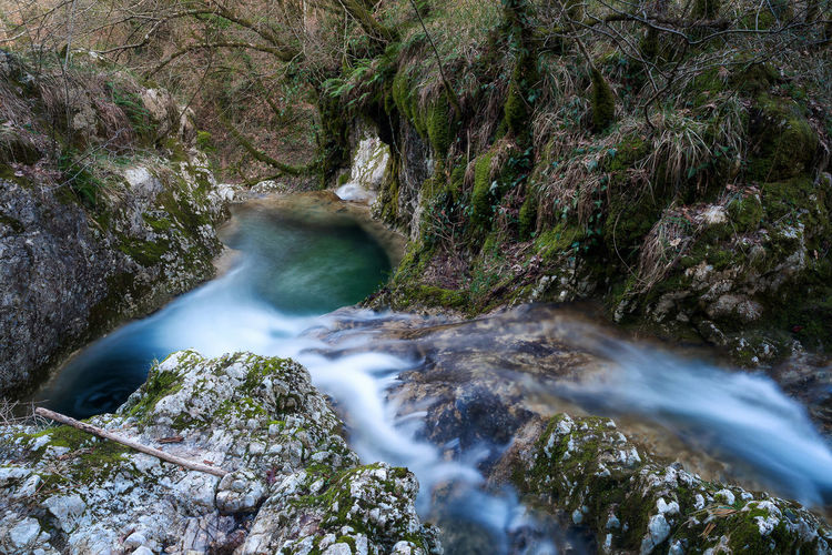 Pozza del Diavolo waterfall, in the municipality of Monte San Giovanni in Sabina, Italy. Waterfall, long exposure. Spectacular Stunning Water Reflections Beauty In Nature Blurred Motion Day Emerald Flowing Water Forest Long Exposure Motion Nature No People Outdoors Puddle Rapid River Riverscape Scenics Stream Tranquil Scene Tranquility Tree Water Waterfall