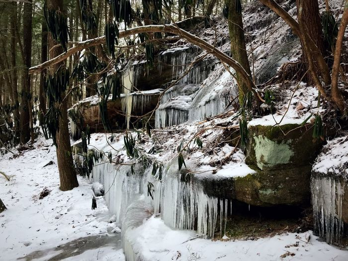 Winter Snow Cold Temperature Nature Frozen Weather Ice Rock - Object No People Tranquility Beauty In Nature Outdoors Tree Day Landscape Scenics Waterfall Water