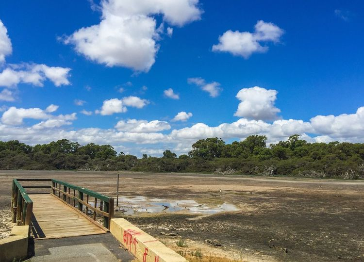Desperate for Rain Cumulus Blue Sky Quiet Dried Up Lake Clouds And Sky Dried Wetland Desolate Tranquil Scene Peaceful Place Spearwood Western Australia Trees Puddles Reserve Nature Conservation Wildlife Dried Drought Market Garden Swamp Wetland Swamp Pier Jetty Dock