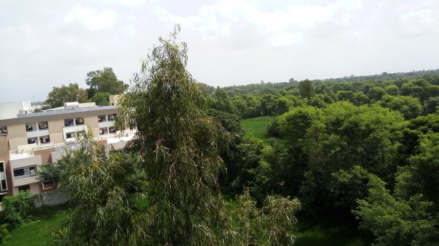 The nature is beautiful than any girl Beauty In Nature Trees Hostel View From The Window... Tree Architecture Built Structure Building Exterior Sky House Growth Green Color Cloud Branch Day Cloud - Sky Outdoors Lush Foliage No People Nature Green Scenics Tranquil Scene Tranquility