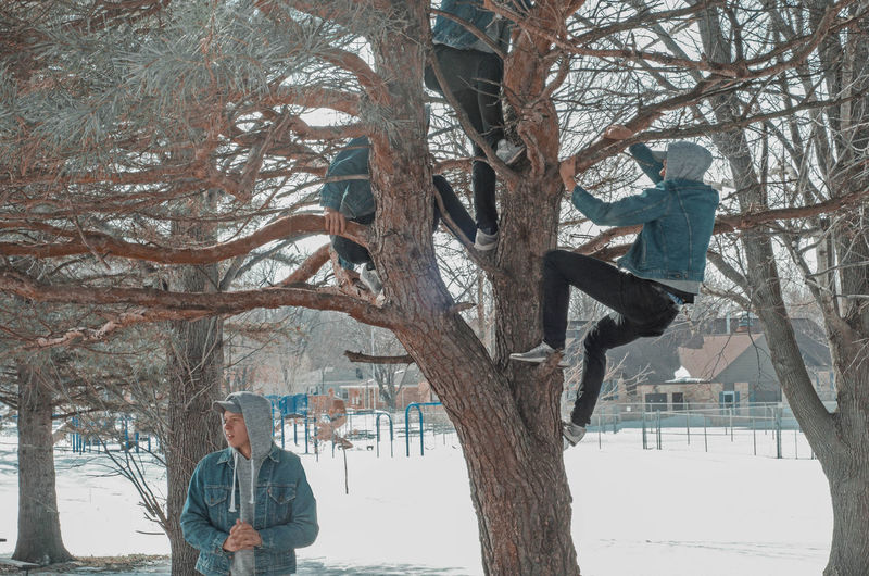 People on bare tree during winter